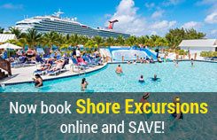 Cruise Shore Excursions